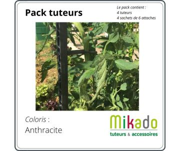 Pack tuteurs - Anthracite...