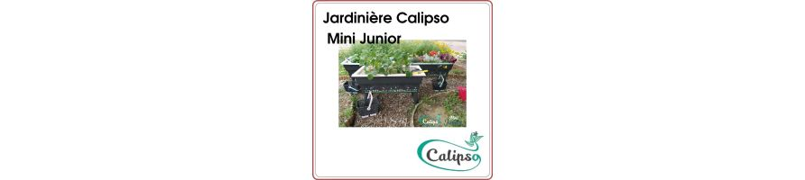 Flowerbox Calipso Mini Junior