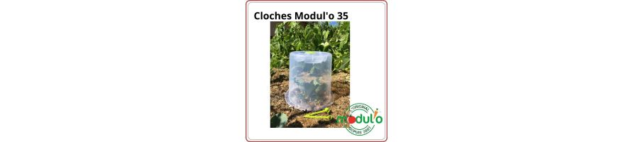 Forcing cloche Modul'o 35